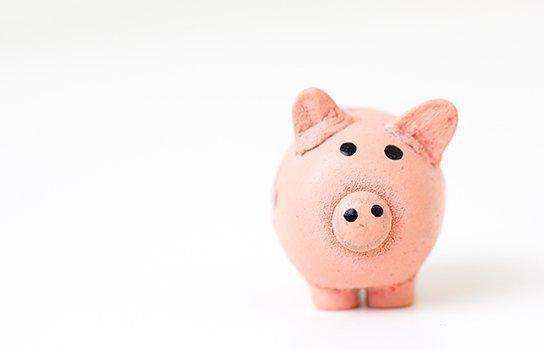 AAA Discounts & Rewards® Program for Members